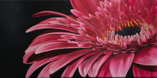 Peindre une fleur gerbera