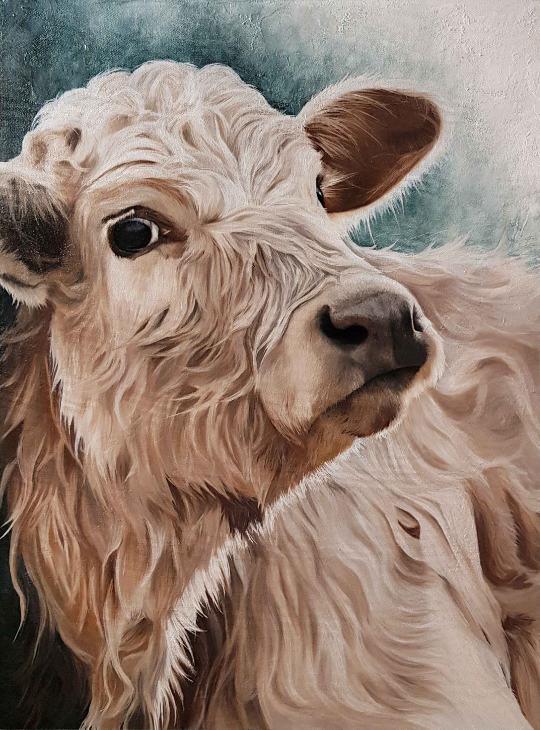 Cours de peinture en ligne peinture à l'huile vache Highland