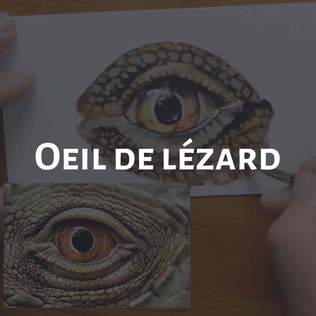 Cours de peinture acrylique yeux animaux