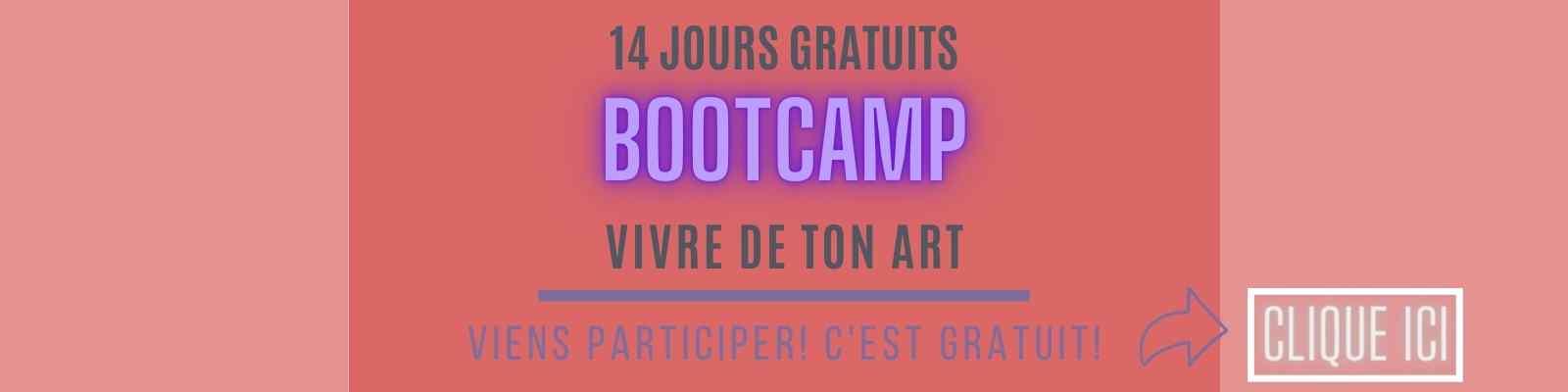 Bootcamp 14 jours formation gratuite pour vivre de ton art