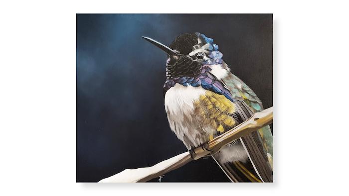 Colibri cours de peinture huile soluble en ligne