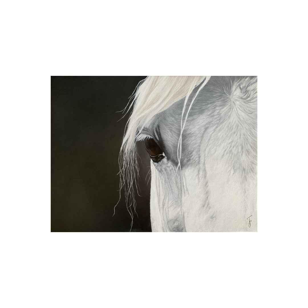 Regard d'un cheval blanc en peinture à l'huile soluble à l'eau